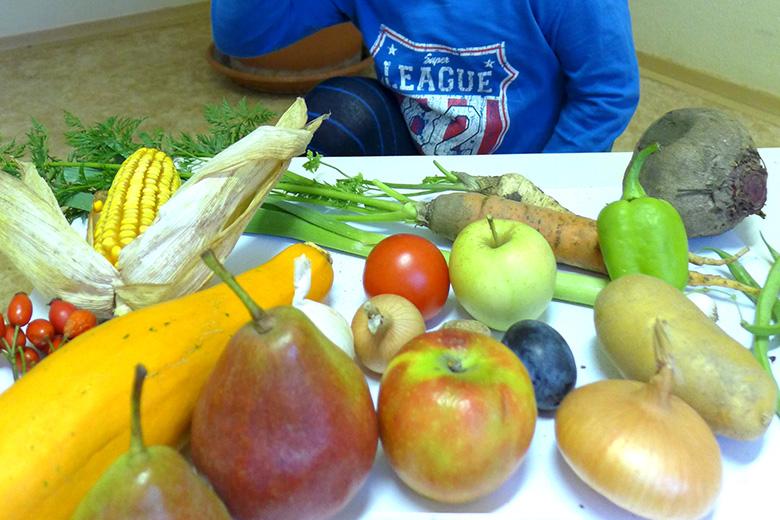 Výstavka Plody našich zahrádek a polí
